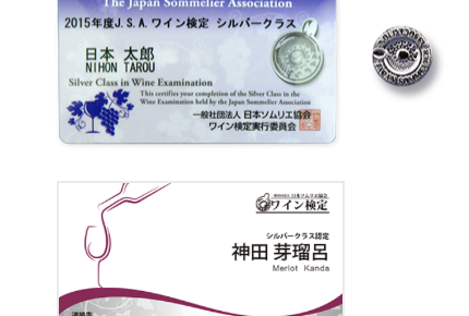 silver-class card